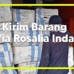 Kirim Barang Via rosalia Indah